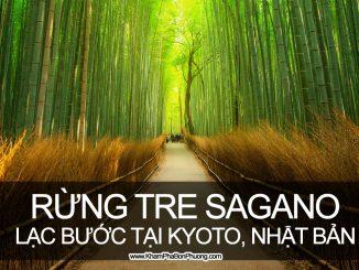 Lạc bước giữa rừng tre Sagano, Kyoto, Nhật Bản | Khám Phá Bốn Phương